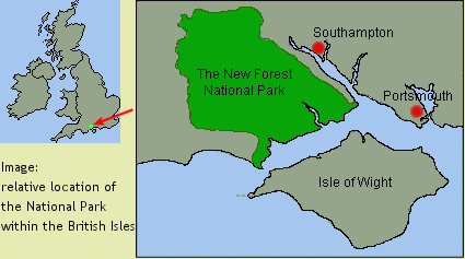The New Forest National Park location and how to get there